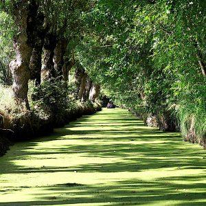 Gite près Vensie Verte